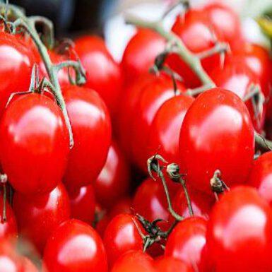 Franse tomatentaart